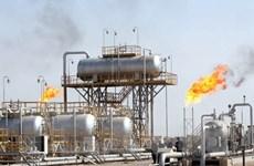 """""""Giá dầu giảm không tác động nhiều đến lĩnh vực hóa dầu của Việt Nam"""""""
