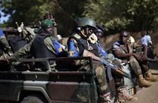Binh lính Mali và phiến quân đấu súng khiến 5 người thiệt mạng