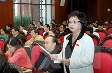 Làm rõ trách nhiệm liên quan đến sai phạm của bà Châu Thị Thu Nga