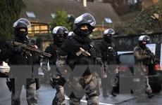 EU kêu gọi lập liên minh chống khủng bố với các nước Arab