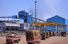 Indonesia xây dựng thêm 10 nhà máy đường để giảm nhập khẩu