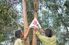 Tây Ninh: Tập trung bảo vệ gần 60.000 ha rừng trong mùa khô