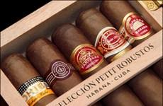 Doanh nghiệp xì gà Cuba dự tính chiếm thị phần cao tại Mỹ