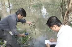 Khô hạn và xâm nhập mặn đe dọa hơn 25.000ha lúa ở Hậu Giang