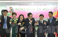Sôi nổi chương trình Chào Xuân mới của kiều bào tại Hàn Quốc