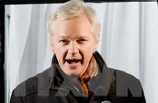 Cơ quan công tố Thụy Điển chấp thuận thẩm vấn cha đẻ WikiLeaks