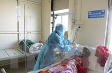 Số người tử vong do cúm lợn đang tăng mạnh tại Ấn Độ