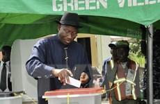 Sẽ kéo dài thời gian bỏ phiếu bầu cử tổng thống tại Nigeria