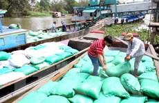 Doanh nghiệp tại Long An hoàn thành chỉ tiêu thu mua lúa tạm trữ
