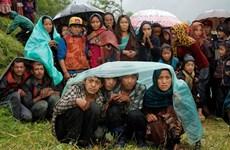 Hoạt động cứu hộ động đất tại Nepal gặp khó khăn do mưa lớn