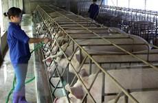 Thu hút vốn ngoại vào nông nghiệp qua mô hình đối tác công tư