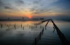 Giải quyết hài hòa giữa khai thác và bảo tồn Khu sinh thái Tiền Hải