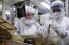 Nga quan ngại việc Mỹ đặt phòng thí nghiệm y sinh ở Gruzia