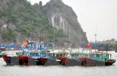 Bão số 1 sẽ đổ bộ vào đất liền tỉnh Quảng Ninh trong 12 giờ tới