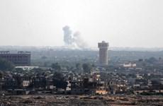 Quân đội Ai Cập tiêu diệt hàng chục tay súng tại bán đảo Sinai