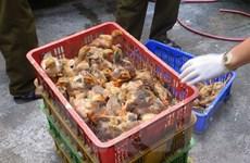 Bắc Giang: Bắt giữ hơn 3.000 con gia cầm không rõ nguồn gốc