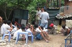 Đột kích bắt gần 40 người tham gia sới đá gà giữa ban ngày
