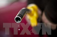 Nhân tố Trung Quốc đẩy giá dầu thế giới tiếp tục giảm sâu