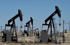 Kinh tế và công nghiệp Eurozone hưởng lợi khi giá dầu giảm