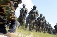 Hơn 200 tay súng Boko Haram đầu hàng quân đội Nigeria