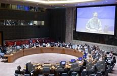 Đức đề nghị mở cửa Hội đồng Bảo an cho bốn cường quốc