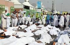 Saudi Arabia đồng ý cho hồi hương thi thể người hành hương Iran