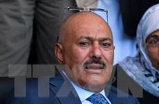 Yemen: Đảng của cựu Tổng thống Saleh chấp nhận kế hoạch hòa bình