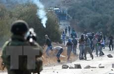Lãnh đạo Palestine, Israel hối thúc kiềm chế hành động bạo lực