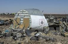 Ai Cập cố gắng giảm tác động tiêu cực của vụ rơi máy bay Nga