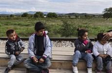 UNHCR cảnh báo về tình trạng trẻ em không quốc tịch trên thế giới