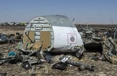 Sự kiện quốc tế tuần 2-8/11: Có bom trên máy bay Nga gặp nạn