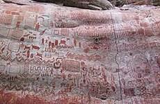 Phát hiện hài cốt của người tiền sử tại khu vực rừng Amazon