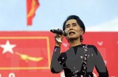 Myanmar: NLD giành hơn 77% số ghế trong cuộc tổng tuyển cử