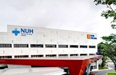 Singapore: 178 trẻ phải kiểm tra sau khi tiếp xúc y tá mắc bệnh lao