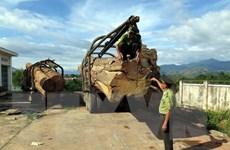 Kon Tum: Lâm tặc ngang nhiên tẩu tán tang vật khai thác gỗ lậu