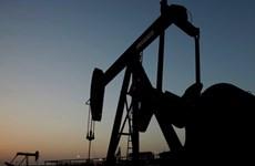 Sản lượng dầu của Nga trong năm 2016 dự kiến tăng dù giá giảm