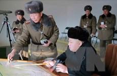 Tình báo Hàn Quốc: Triều Tiên có thể chế tạo 8 vũ khí hạt nhân