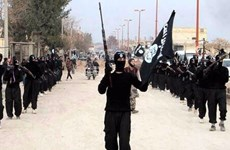 Hàn Quốc: Có 7 lao động nước ngoài gia nhập IS trong 6 năm qua