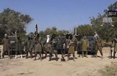 Đánh bom liều chết thảm khốc ở Cameroon, 25 người thiệt mạng