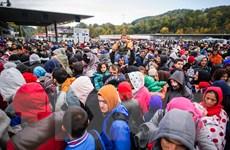 Pháp: Nguy cơ IS trà trộn vào dòng người tị nạn tới châu Âu