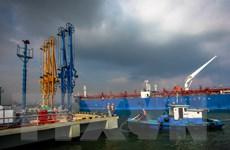 Petrolimex được phát hành thêm cổ phiếu để tăng vốn điều lệ