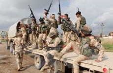 Iraq đẩy lùi các cuộc tấn công của IS tại các tỉnh trọng yếu