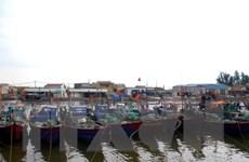 Thống nhất xây dựng ba bến neo đậu thuyền cho ngư dân Sầm Sơn