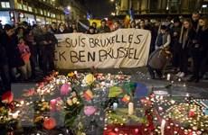 """Đánh bom Brussels: Mối nguy từ các """"xóm liều"""" nuôi dưỡng cực đoan"""