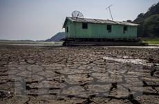 Các hiệp định thương mại lớn đe dọa cuộc chiến chống biến đổi khí hậu
