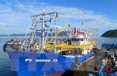Tàu cá vỏ thép của ngư dân Phú Yên được mùa chuyến biển đầu tiên