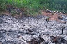 Quảng Ngãi: Cháy nương rẫy ngay sát rừng phòng hộ Nước Nia