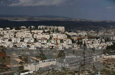 Israel phê duyệt xây dựng 300 nhà định cư mới tại Bờ Tây