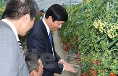 Tỉnh Wakayama muốn tăng hợp tác du lịch, ngư nghiệp với Việt Nam