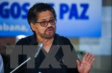 FARC cảnh báo áp lực phá vỡ cam kết ngừng bắn đơn phương